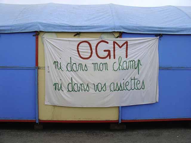 Etats-Unis : les OGM continuent de gagner du terrain